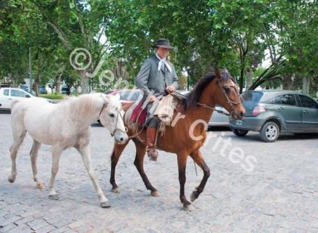 Gaucho in San Antonio de Areco