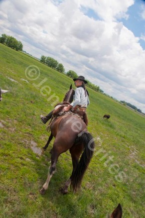 Shooting one-handed with a heavy DLSR and zoom lens while riding a horse.