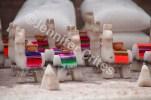 Miniature llamas made of salt