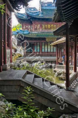 Yu Garden-02319