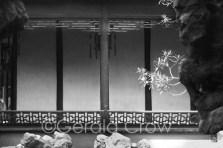 Yu Garden-3974