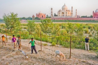 boys and their goats across the river from the Taj Mahal complex
