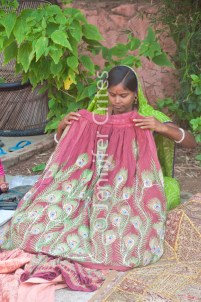 Ranthambhore women crafts 398