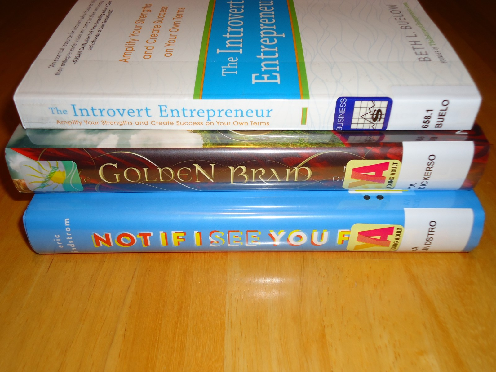 Library Haul and Reading List 12/11/15