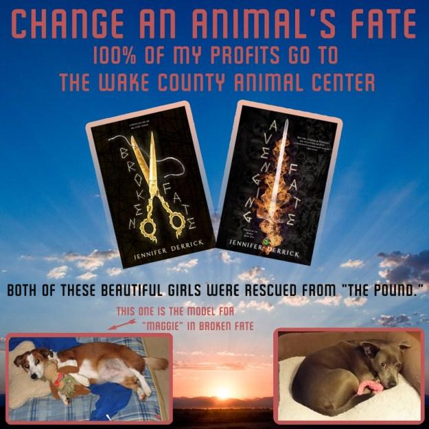 Animal Shelter Donation