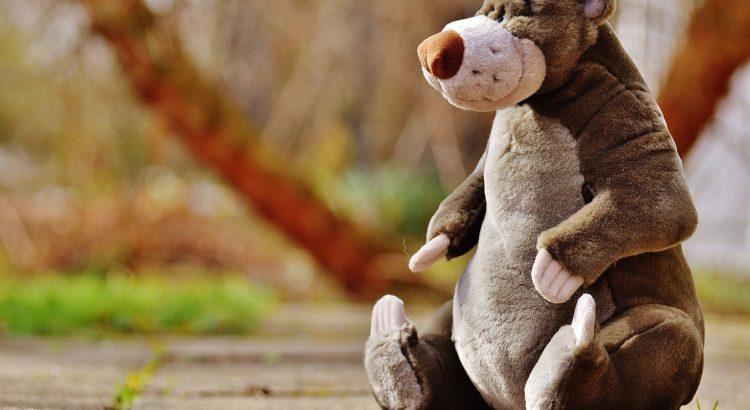 Fun Stuffed Bear