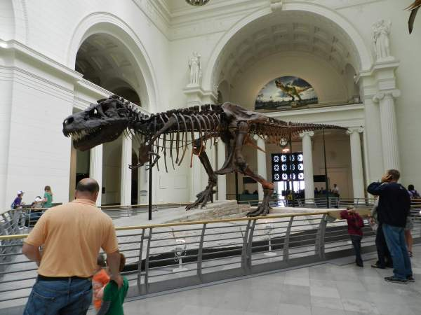 Field Museum Chicago