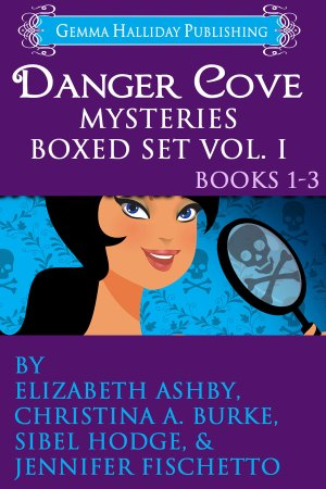 Danger Cove Mysteries Box Set Cover Art