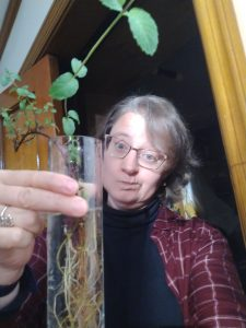 Lenten Metaphors for Non-Gardeners – Riparians at the Gate + Jennifer Fitz