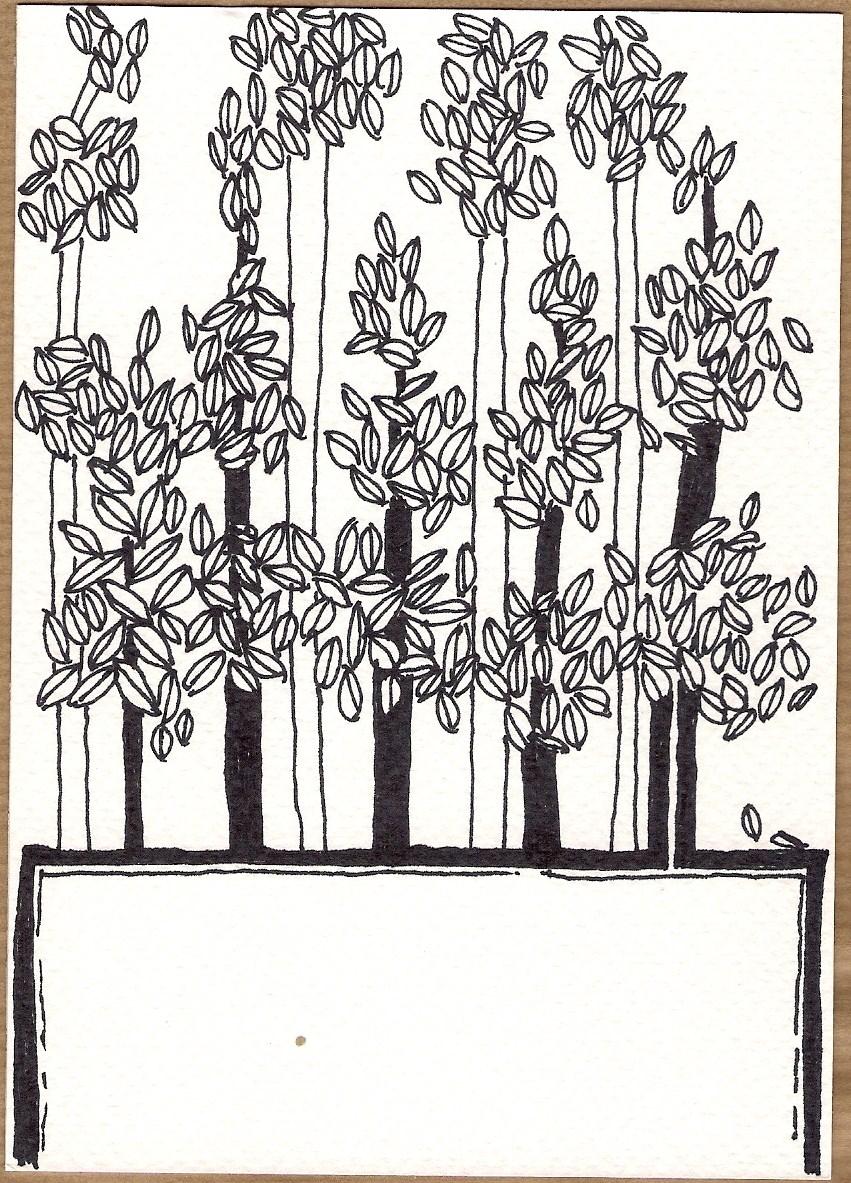 Serie Disegni 12 Alberi #02