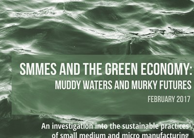 Research Report – SMMEs and the Green Economy