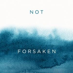 Not Forsaken, by Jennifer Michelle Greenberg