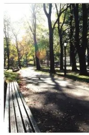 central park shadows (c)jenniferhillman2000