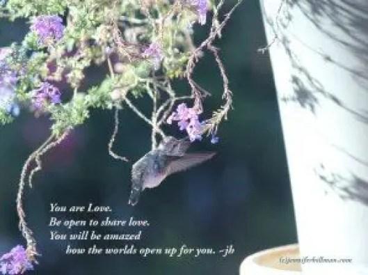 Love hummer