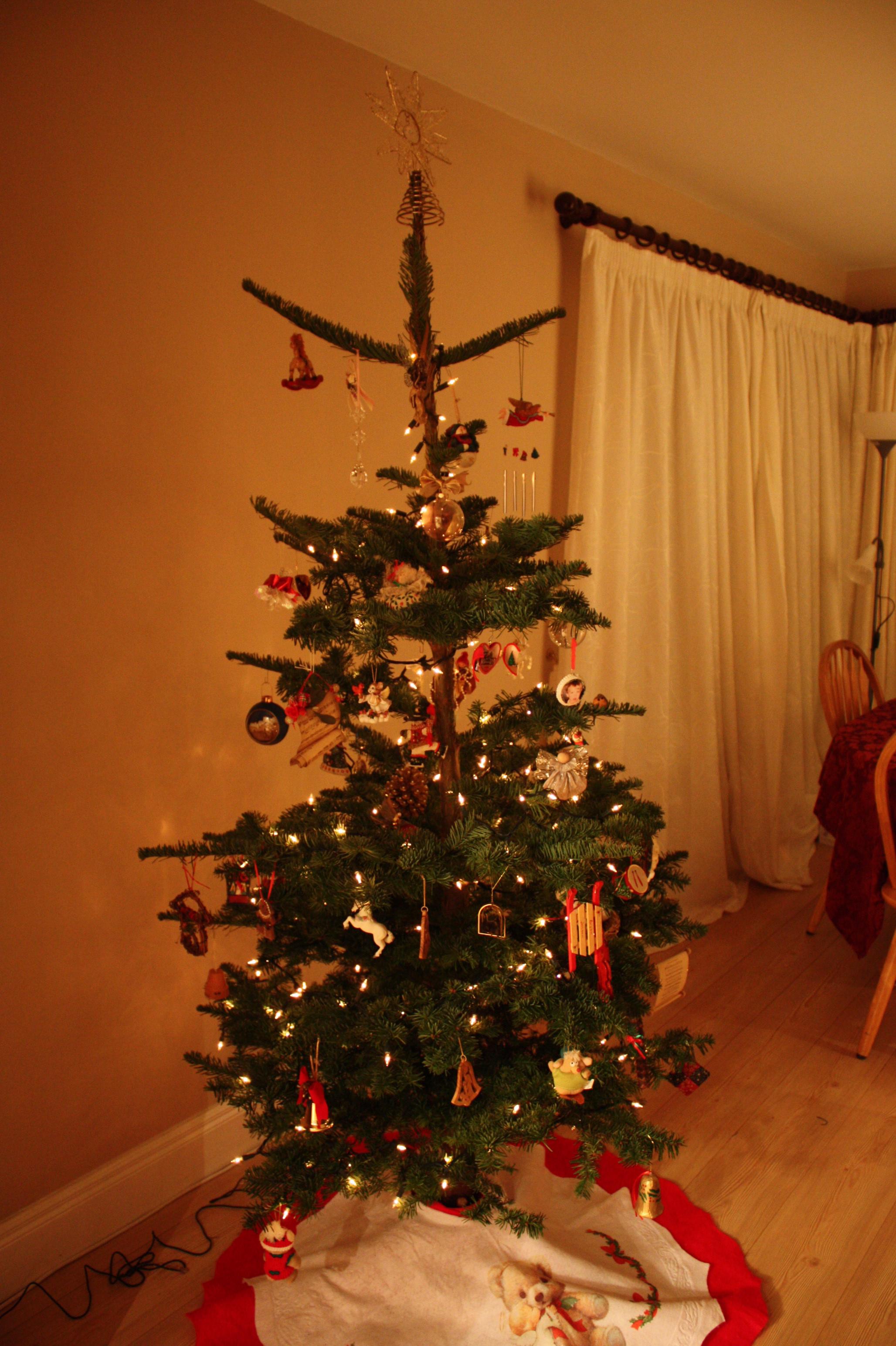 Charlie Brown Christmas Tree | Jennifer Jensen, Author