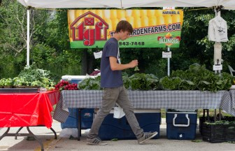 Corbin Kinney inspects a radish at the Time Garden Farms stand at the Brookfield farmers market .
