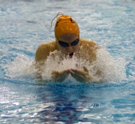 OPRF senior Genevieve Curry competes in the 200-yard medley relay at the IHSA Girls Sectional on Nov. 14, 2015 at Fenwick High School.