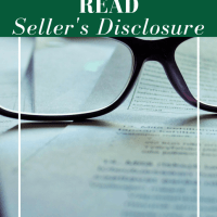 The Seller's Disclosure