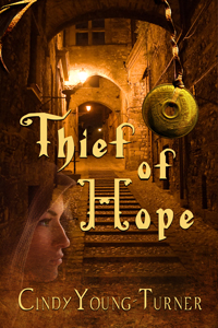 blogger book fair thief of hope