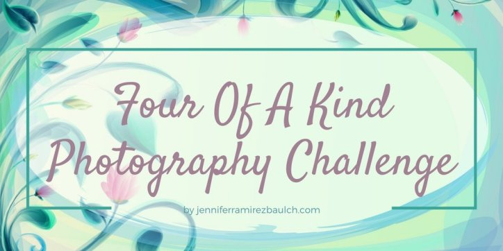 Four of a kind photography