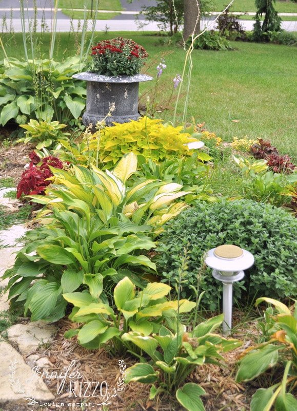hosta and coleus fall landscaping