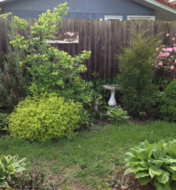 Garden view in side lot