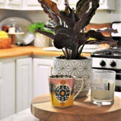 Fall Kitchen Decor Home Equipment Early With Crops Decoration