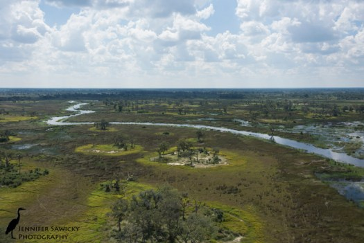 The glorious Okavango Delta, where the division between land and water changes on a daily basis.
