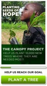 Canopy 2