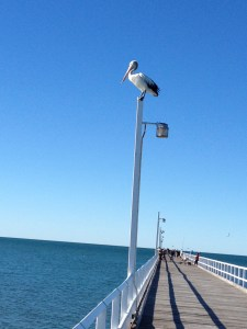 Hervey Bay 2