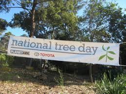 Nat Tree Day 3