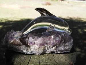 Crystal Dolphin 1