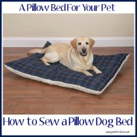 How to Sew a Pillow Dog Bed - Jen Around the World