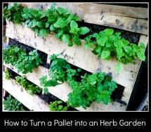 Turn Pallet Garden
