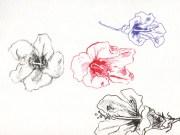 flower jennifer tracy