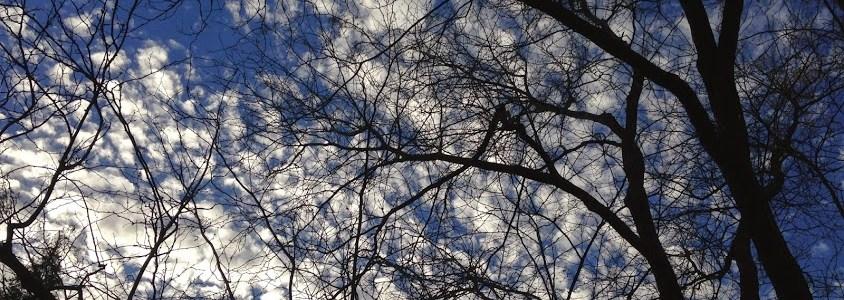 Revisiting Gratitude