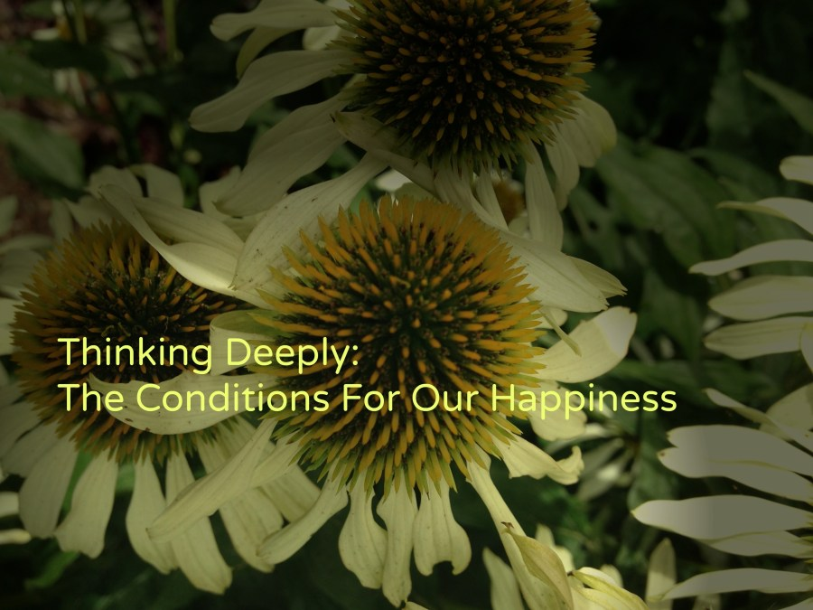 The Conditions For Our Happiness