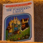 Choose Your Own Adventure Book
