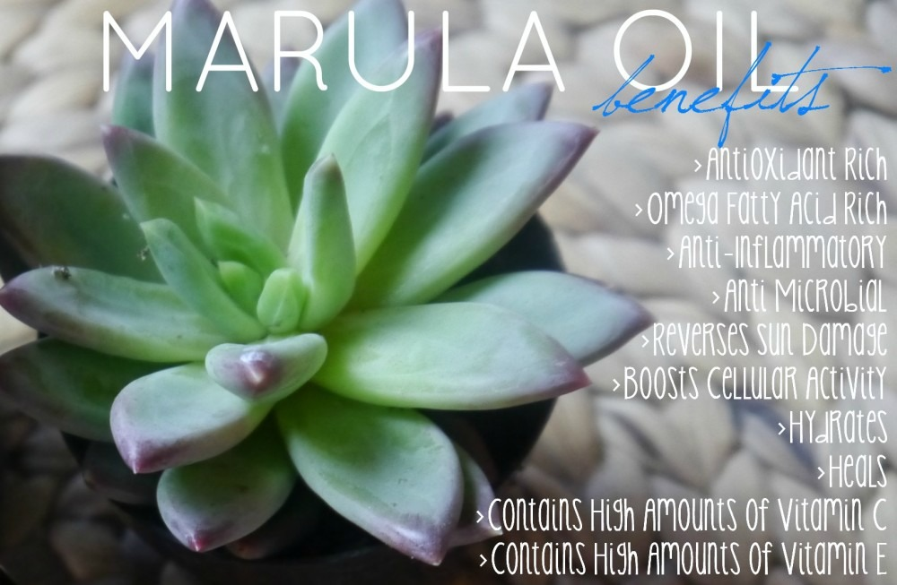 Marula Oil Benefits