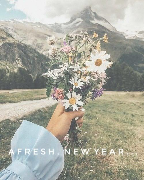 A Fresh New Year…