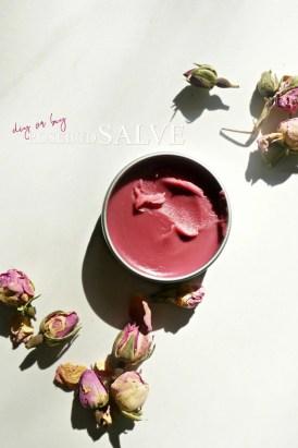 DIY or BUY Smith's Rosebud Salve