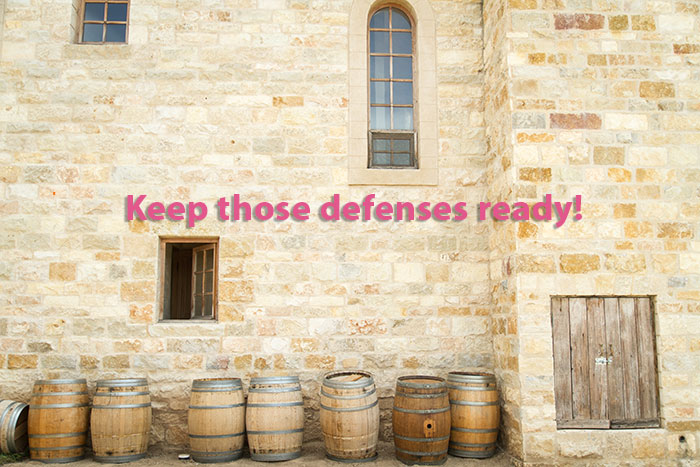 defenses-ready