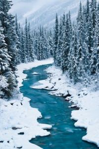 canada water