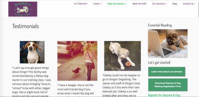 dingos dogsitting testimonials