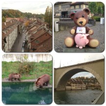 At Barengraben or the bear pit park in Bern. The bear has long served as symbol of Bern. Legend has it that, in 1191, Duke Berthold V of Zähringen vowed to choose as namesake the first animal his hunt met in the wood that was to be chopped down for his new city.