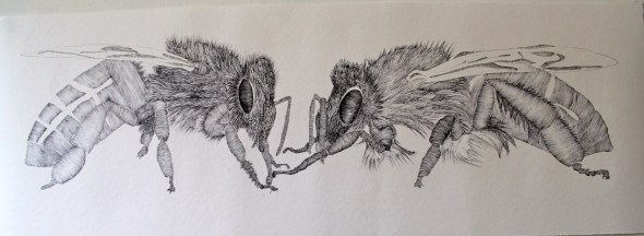 The two bees 001
