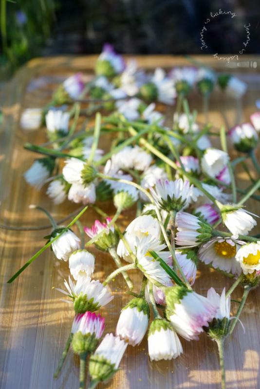 Backideen für Gänseblümchen
