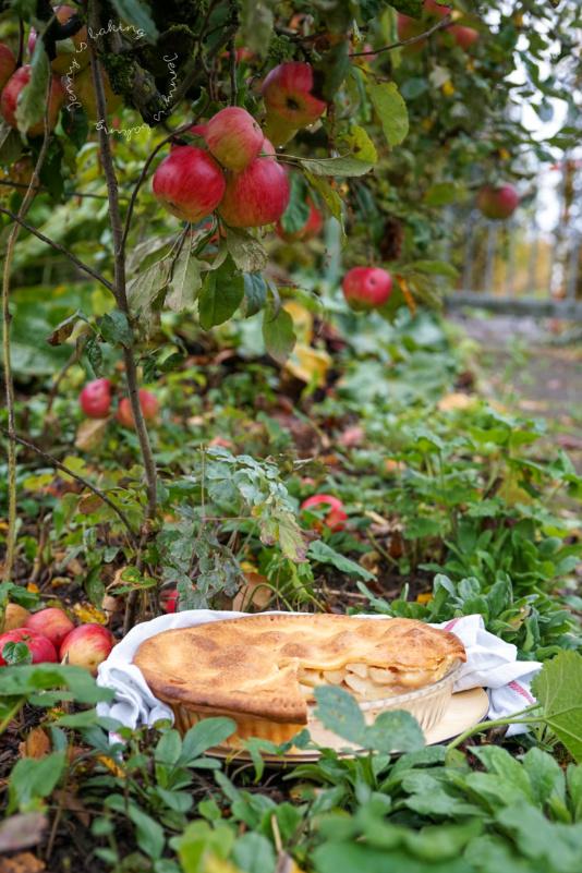 Apple-Pie mit Frischkäse-Mürbeteig