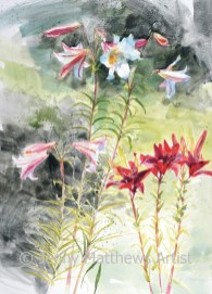 Lilies in the Sun, 76 x 56cm, watercolour on paper, framed price £1,850