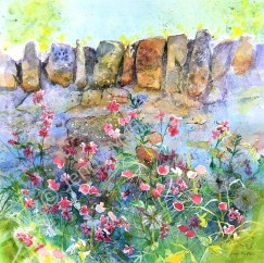 Red Campion, St Andrews, 42 x 42cm, watercolour on paper, framed selling price £1,500 SOLD